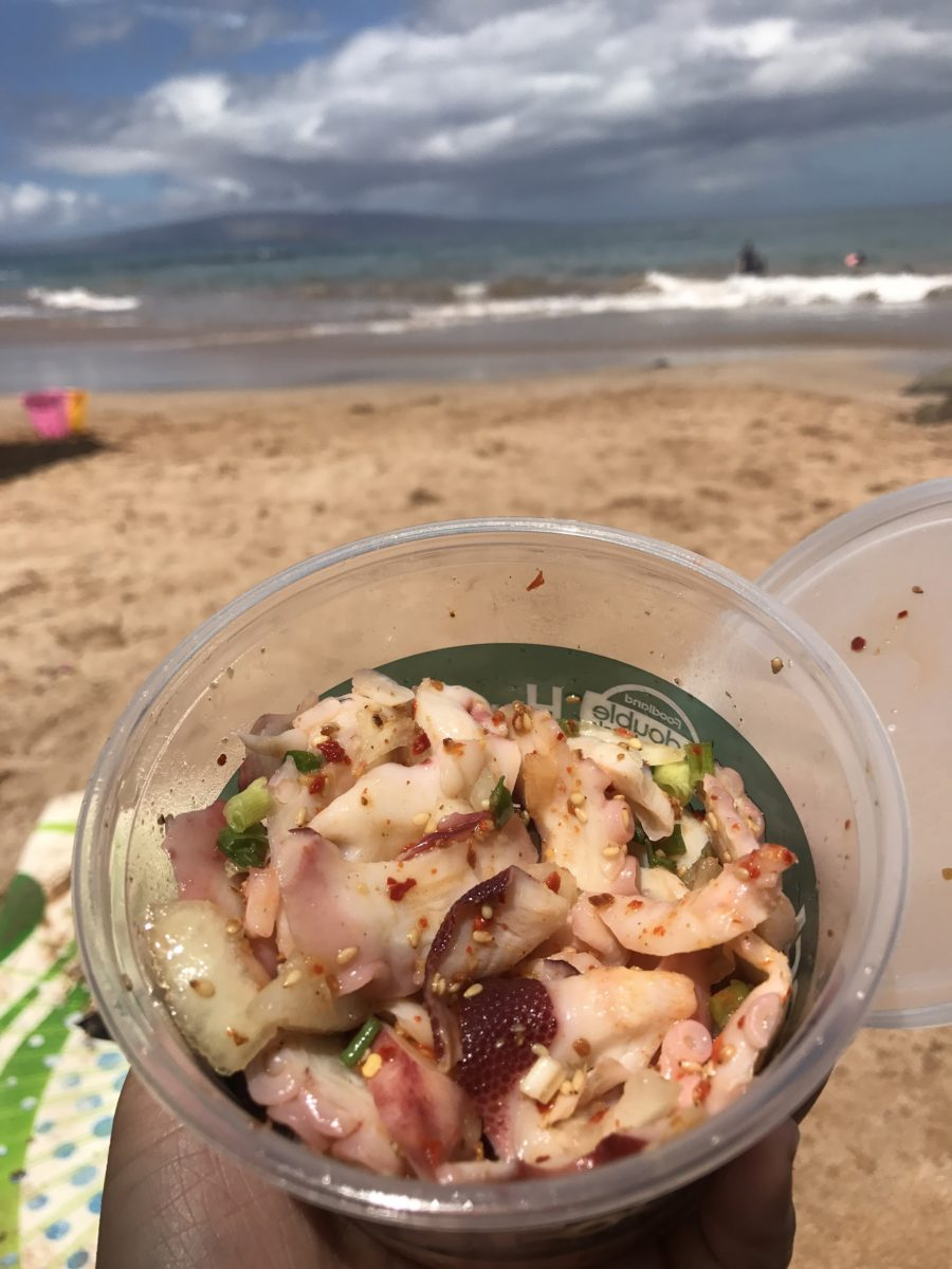 Nomiya Travel Journal | Our Trip to Hawaii (including fresh local Poké!)